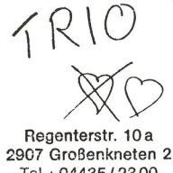 Cover: Trio – Trio